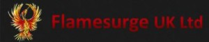 Flamesurge temp icon