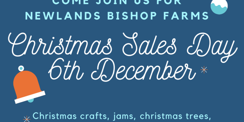 Newlands Bishop Farm Christmas Sales Day